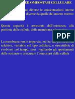 fisiologia generale slide 2