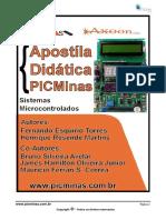 Apostila_PICMInas.pdf