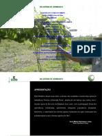 RELATÓRIO DE ATIVIDADES 2016.doc