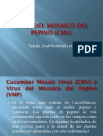 5 Virus Del Mosaico Del Pepino (Cmv)