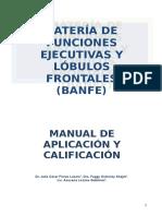 Manual FE-Rev Julio Maura 2-1