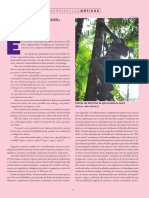 1 Estudo Dirigido de Artigo BIOPROSPECÇÃO NO BRASIL