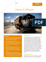 A Year of Protests in Ethiopia - RVI Meeting Report (2016)