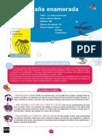 PROGRAMACION ARAÑA ENAMORADA.pdf