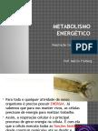 respcelulglicolise-110630213815-phpapp01.pptx