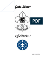 3-guiasnior-eficinciai-120319203824-phpapp02.pdf