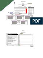 Formulari_auditoria (7).xls