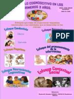 AFICHE  17.pdf