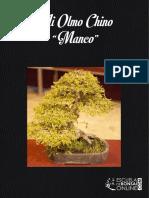Mi Olmo Chino Manco eBook