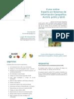 MappingGIS Programa Curso Experto GIS