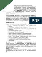 Contrato Asistente Tecnico Nr 2015 (2)Corrregido