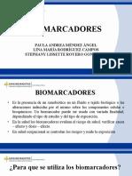 Bio Marc Adores