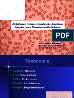 Clase 15. Generos plasma Haemobartonella Eperytrozoon y A Egyptian Ella 2010