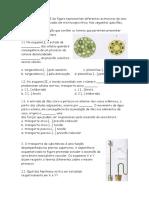 Ficha Biologia 10º - Distribuição Da Matéria