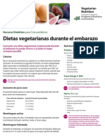 Pregnancy Vegetarian Nutrition Spanish