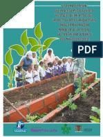 SISTEMATIZACIÓN PROYECTO PATIOS PRODUCTIVOS.pdf