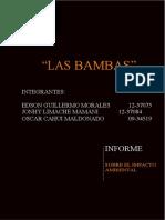 Las Bambas - Informe EIA