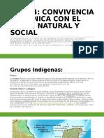 Contenido Ciencias Sociales
