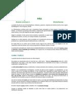 tec-pina.pdf