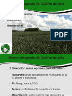 biblioteca_281_Manejo Integrado del Cultivo de piña.pdf