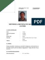 Cv Curriculun Mendoza Bonifacio