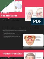 Senos-Paranasales (1).pptx