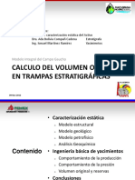 Modelo Integral Gaucho-raulfuentes