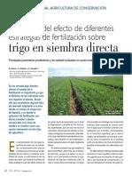 Evaluación-del-efecto-de-diferentes-estrategias-de-fertilización-sobre-trigo-en-siembra-directa.pdf