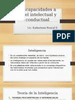 Discapacidades a Nivel Intelectual y Conductual