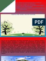argutierrez_procedimiento(FILEminimizer)