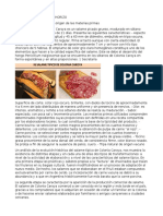 Microbiologia Salame Chorizo