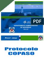 ANEXO08InspecciónCopaso