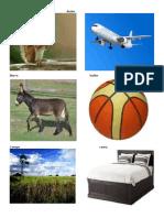 Abecedario Con Imagenes Animales y Cosas