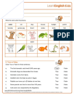 Yourturn Pets Worksheet 0