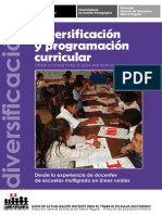 diversificacion_y_programacion.pdf