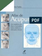 Atlas de Acupuntura (Claudia Focks)