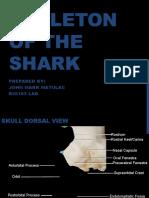 Skeleton of the Shark