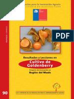cultivo de uchuva.pdf