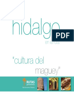 HGO.pdf