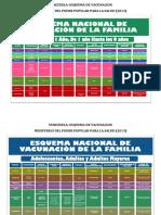 ESQUEMA DE VACUNACION EN VENEZUELA  (1).pdf