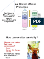23-Hormonal Control of Urine Production