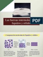 7.-Fuerzas Interm 2017