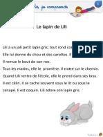 Fiches lecture silencieuse 20.06 Sanléane.pdf