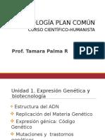 ADN - Clase 1 IV Medio