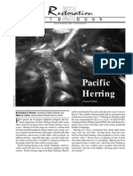 Pacific Herring Not Recovering from Exxon Valdez Oil Spill