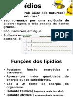 Lipidios e Proteinas 2015