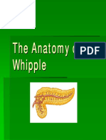 The Anatomy of the Whipple