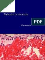 C1. Tulburari de Circulatie Micro 2016-2017