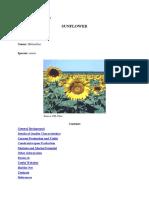 Sunflower 7185B2B36D8B9