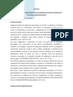 Doctorado - Ensayo